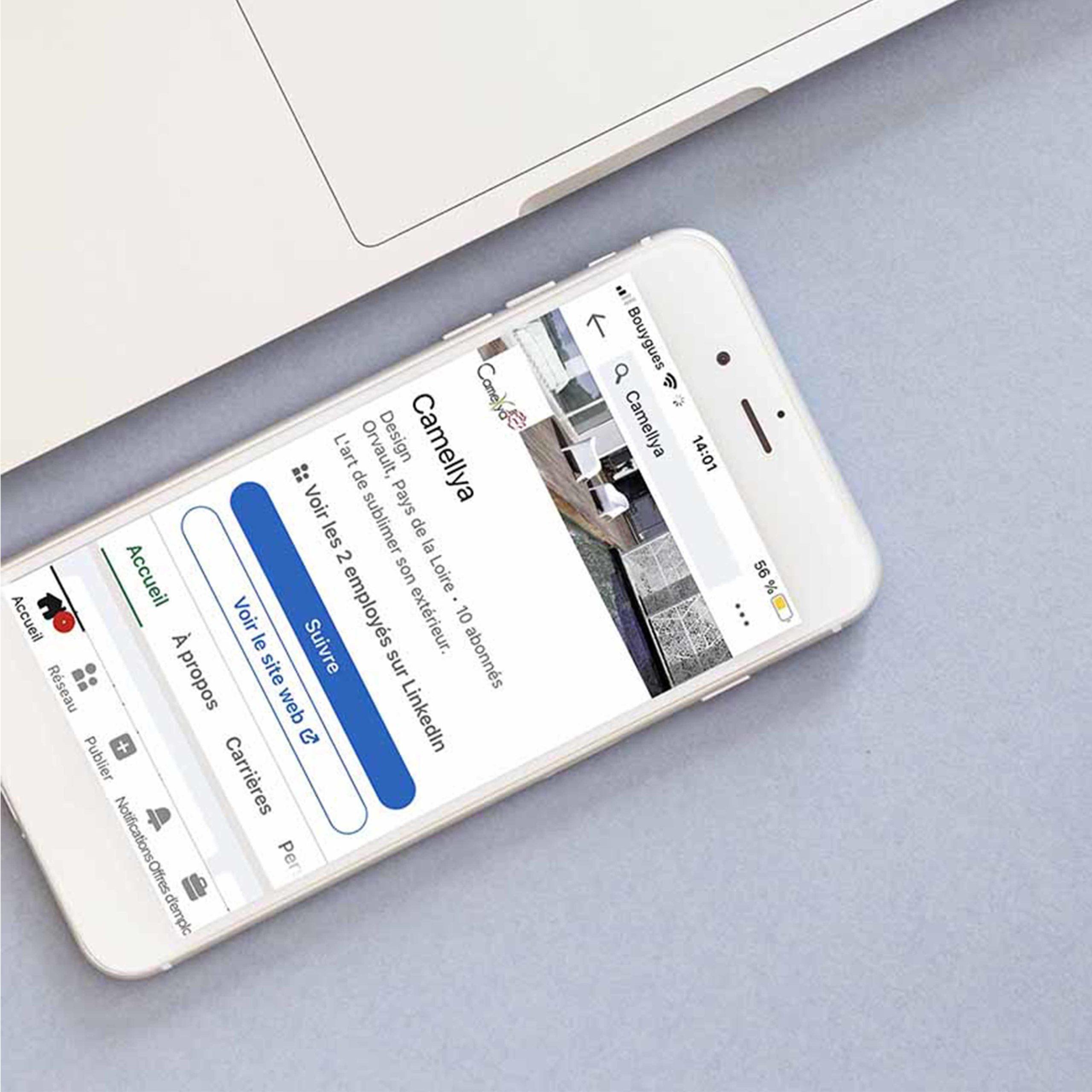 Profil Linkedin Camellya- Delphine PENGUILLY - agence marketing digital Nantes