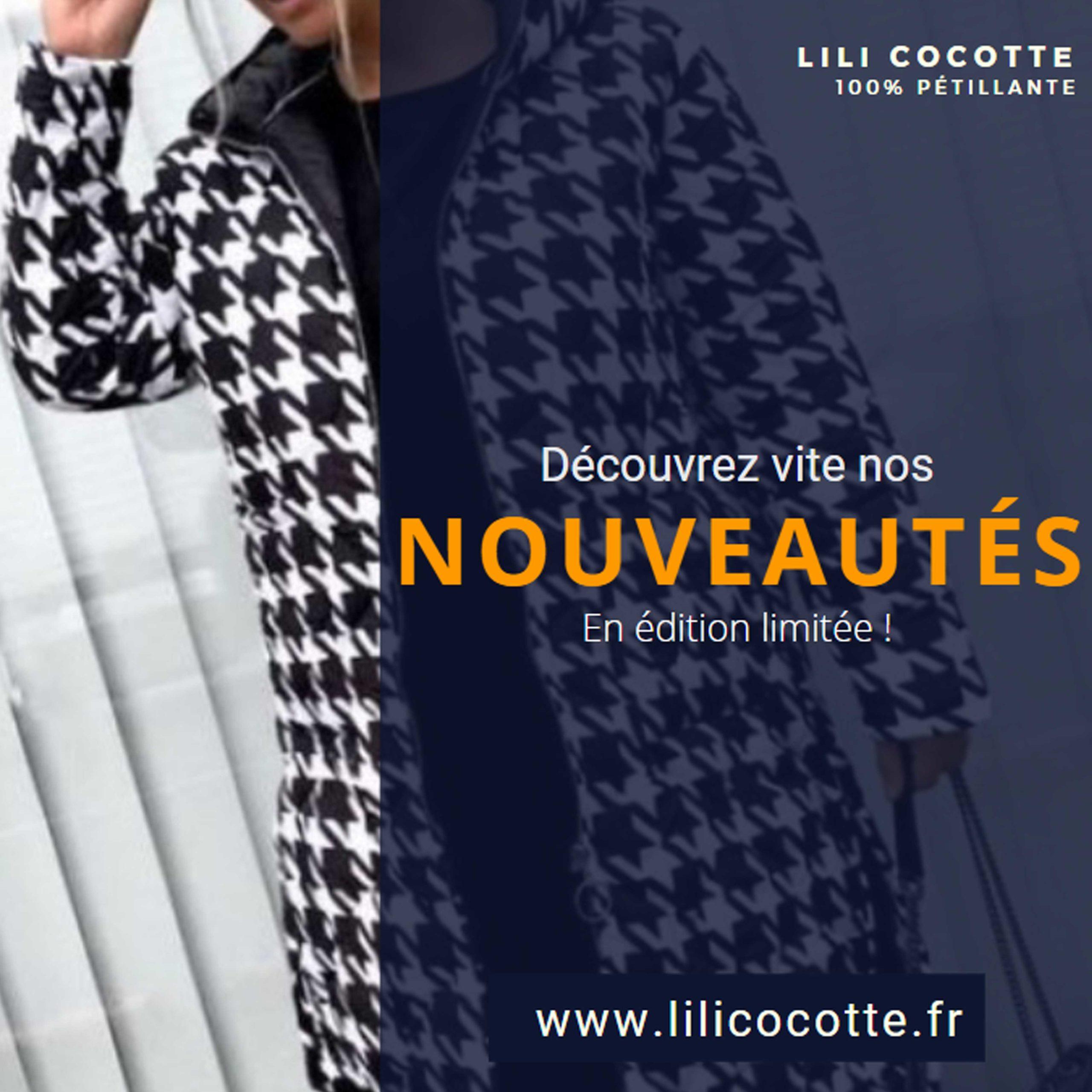 Publication Nouveauté – Lili Cocotte - Delphine PENGUILLY - agence marketing digital Nantes