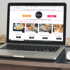 Site Internet Ambra - Delphine PENGUILLY - agence marketing digital Nantes