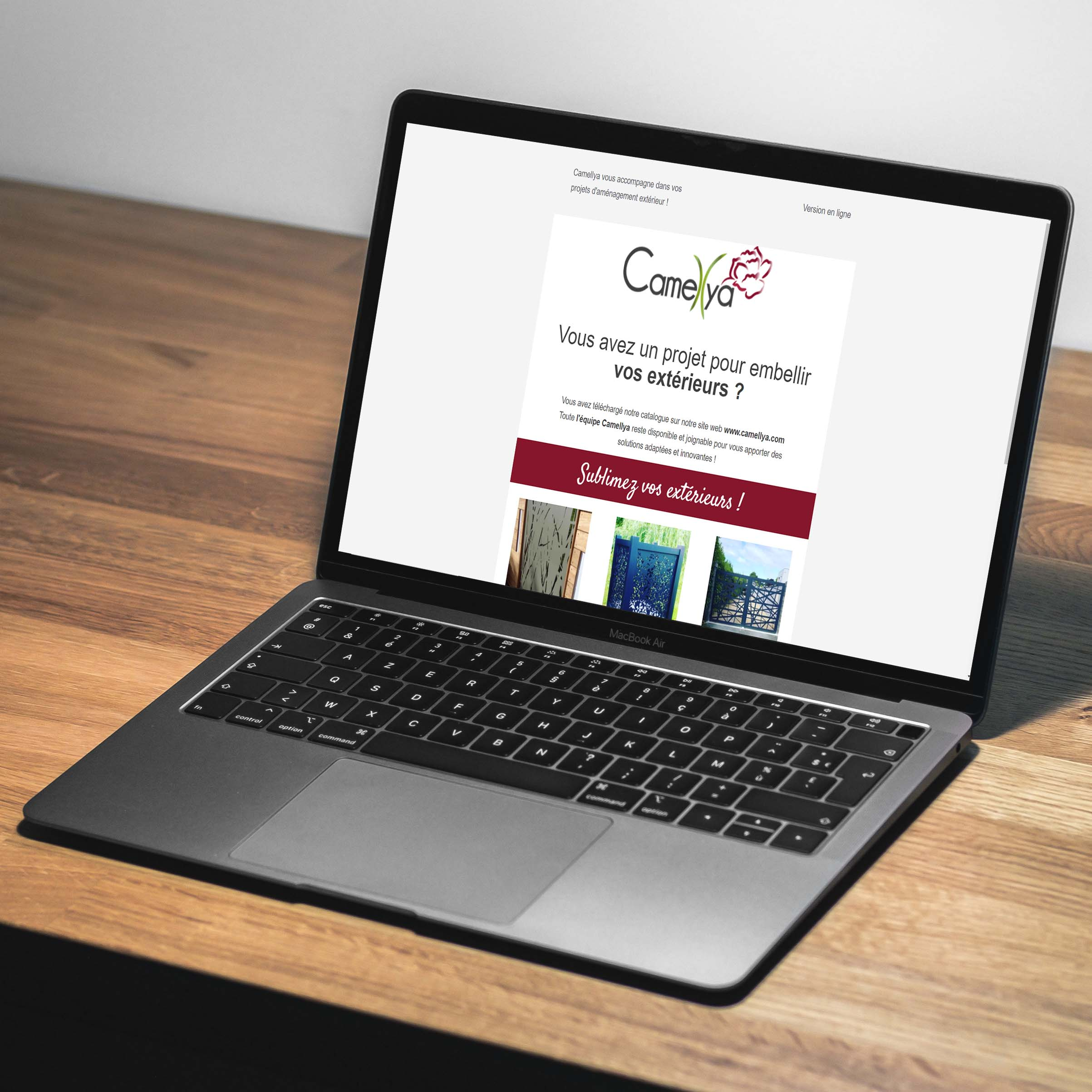 Fidélisation - Emailing Camellya - Delphine PENGUILLY - agence marketing digital Nantes